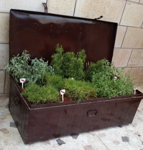 Upcycle Mediterranean Herb Box